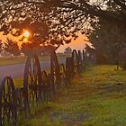 Sunrise on Pflum Road  by John  Kapusta
