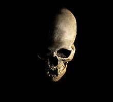 Female human skull by JBlaminsky