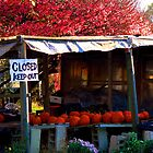 #120  Local Farm Stand by MyInnereyeMike