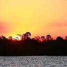 Sunrise at Victoria Falls Africa by Maureen Clark