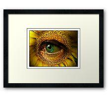 Sunflower with eye Framed Print