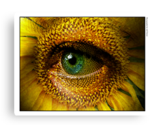 Sunflower with eye Canvas Print