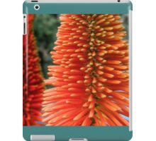Red-orange flower of Eremurus Ruiter-Hybride iPad Case/Skin