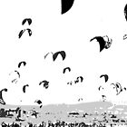 Kite Surfing Andalucia by Grobie