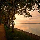 Sunset Path by Béla Török