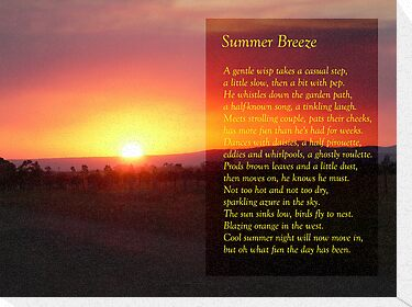 Summer Breeze by Anne van Alkemade