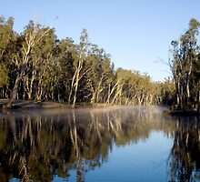 Murray River Dreaming by Michael Eyssens
