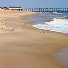 Kitty Hawk Morning Walking on the Beach by nansnana62