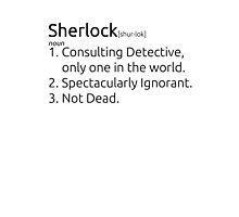 Sherlock defined.  Photographic Print