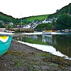 Noss Mayo by Andy Fox