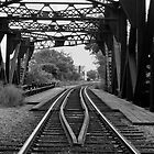 Rail Road 1 by Steve Hogle
