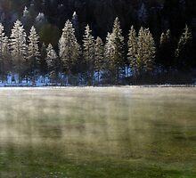 Winter Haze by Walter Quirtmair