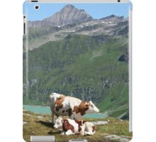 Dairy Cows High Up On A Mountain iPad Case/Skin