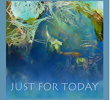 Just For Today Koi by serenitygifts