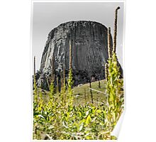 Devils Tower From Red Beds Trail Poster