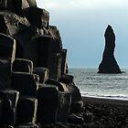 Iceland's Basaltic Columns by karina5