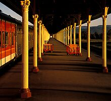 Train Station Albury by Hans Kawitzki