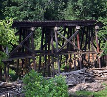 Abandoned Trestle by ericb