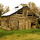 Circa 1800s Chinese hut in the King Valley, Victoria. by symbioeco