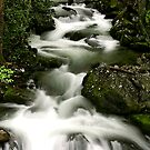 Smoky Mountain Stream by Gary L   Suddath