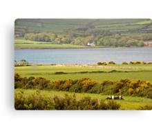 Irish Countryside, Dingle, Ireland Canvas Print
