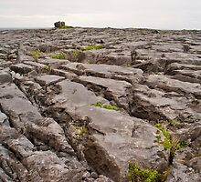 The Burren, Doolin, Ireland by ThomasMaher