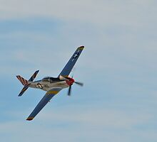 P-51 Mustang by mikewheels