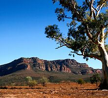 Australian Outback of the Flinders Ranges by jwwallace