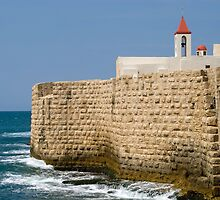 Acre Sea Walls by Mary  Lane