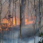 Burning Smoke by WolfHeart692