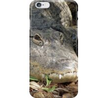 Alligator Smile iPhone Case/Skin
