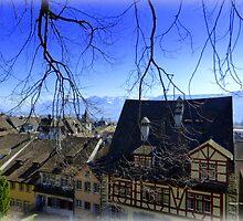 Switzerland in Beauty by Charmiene Maxwell-batten