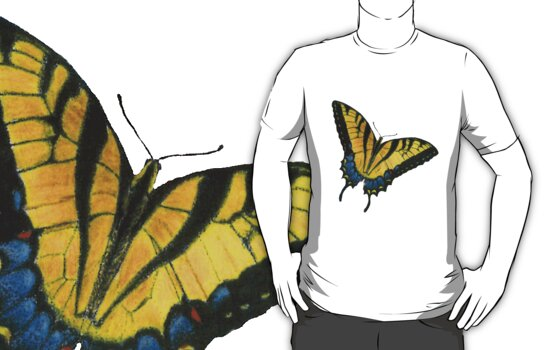 Monarch Butterfly by kurtmarcelle