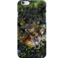 Black Waters 7 iPhone Case/Skin