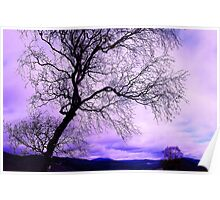 In Touch purple tree Poster