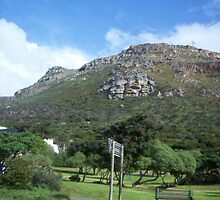 Near Cape Town by mnewmark84