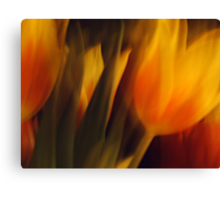 Flowers of Fire Canvas Print