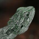 Bearded Dragon by LunarLioness