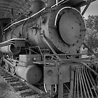 Steam Power! by John  Kapusta