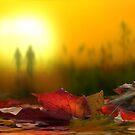 To The Sun by Igor Zenin