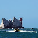 the needles by paul777