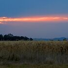 Fire in the Sky by BigRed
