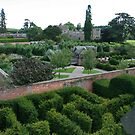 Hampton Court Gardens by Justine Humphries