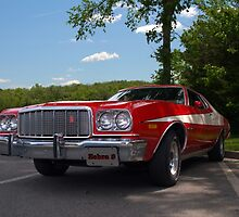 1974 Ford Torino Zebra 3 Replica by TeeMack