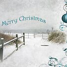 "Snowy Beach Path ""Merry Christmas"" ~ Greeting Card by Susan Werby"