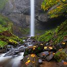 Latourell Falls Autumn by DawsonImages