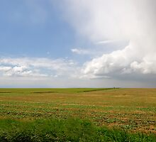 Storm on the Prairies by Mary  Lane