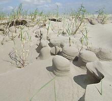 Sand Sculptures by HaroldB