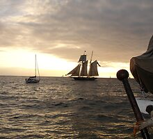 Tall Ships in Dana Point by cfam