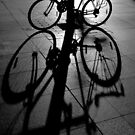Bicycle shadow by Sheila  Smart